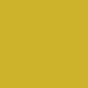 Brazen Yellow - F08, Ressource Peintures