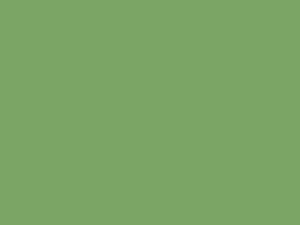 Coriandre - SL34, Ressource Peintures