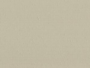 Puce - RMDV22, Ressource Peintures