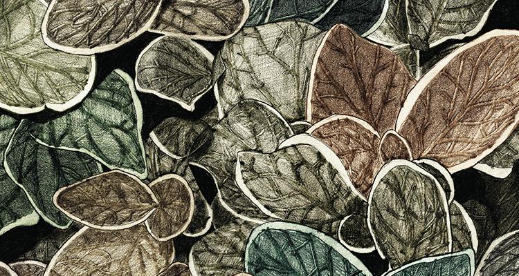 Papier Peint Ressource, Collection Faune & Flore, Motif Charmille, Variation CG02