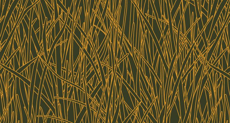 Papier Peint Ressource, Collection Faune & Flore, Motif Herbes Folles, Variation HF04