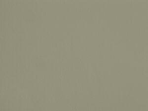 Herbe aux Éclairs - C06, Ressource Peintures