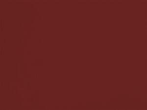 Genêt de l'Etna - C08, Ressource Peintures