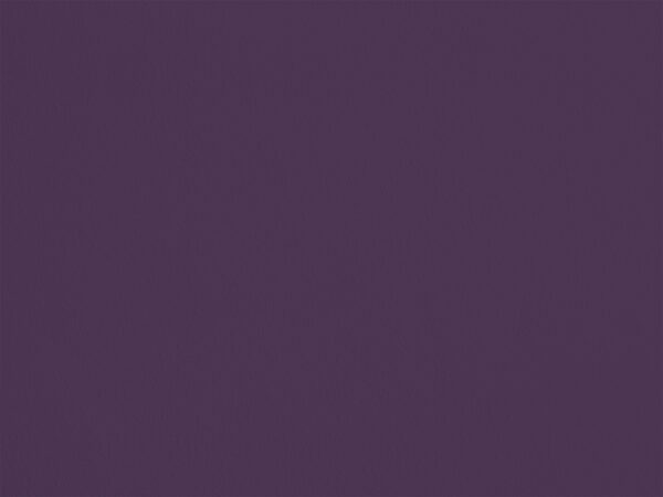 Campanule des Murailles - C22, Ressource Peintures