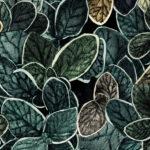 Papier Peint Ressource, Collection Faune & Flore, Motif Charmille, Variation CG06