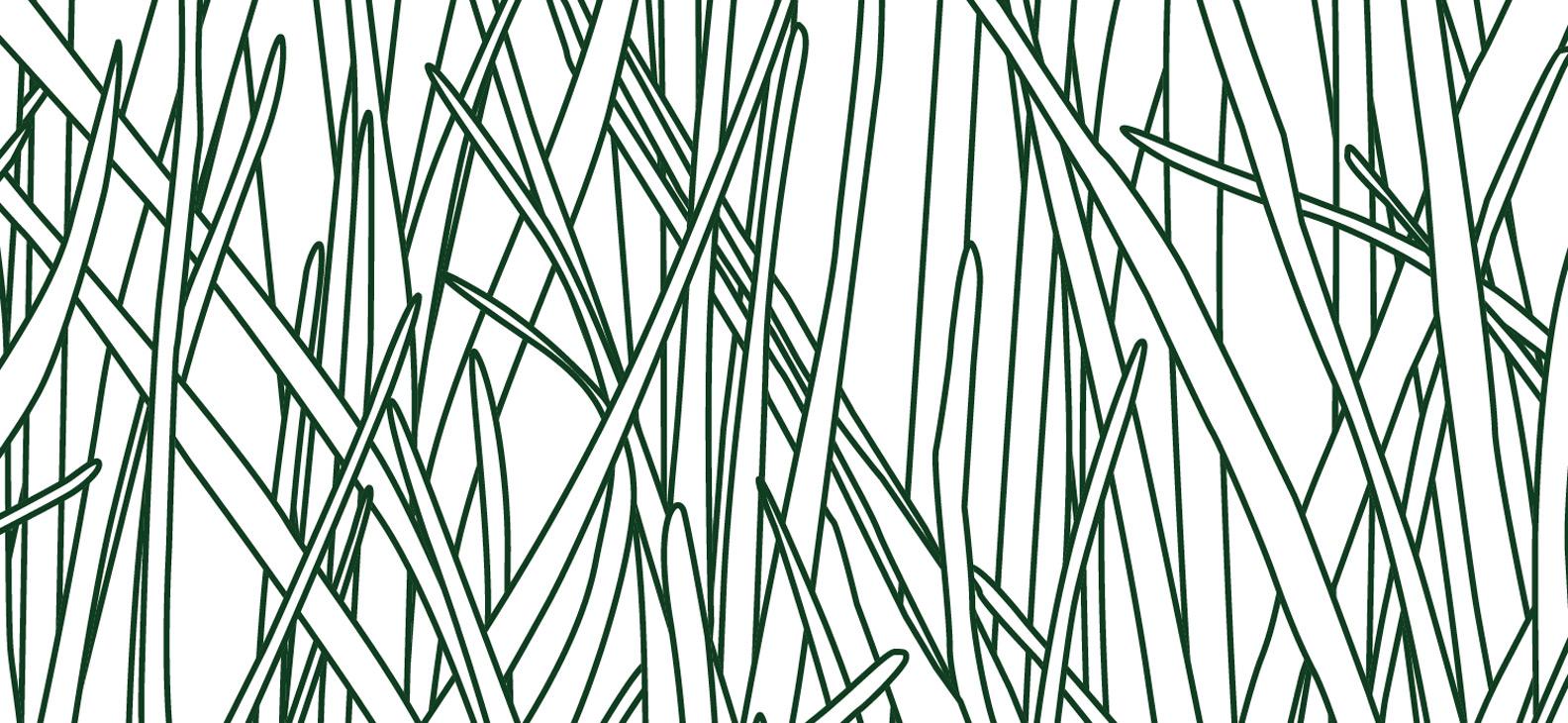 Papier Peint Ressource, Collection Faune & Flore, Motif Herbes Folles, Variation HF08