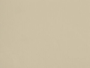 Jaune Raisin - I17, Ressource Peintures