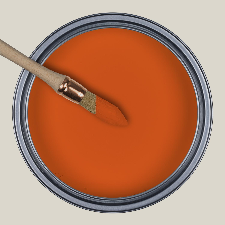 Corail d'oursin - IT11, Ressource Peintures