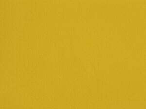 Lemon - POP03, Ressource Peintures