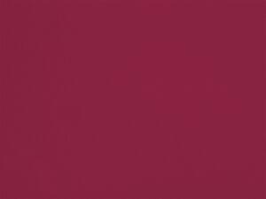 Raspberry - VINT05, Ressource Peintures