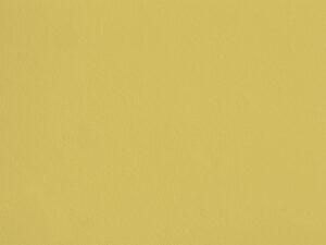 Egyptian Yellow - HC01, Ressource Peintures