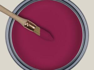 Fiorilla - NR24, Ressource Peintures