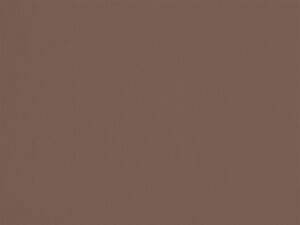 Beige Chameau - S41, Ressource Peintures