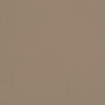 Beige Chameau - S42, Ressource Peintures